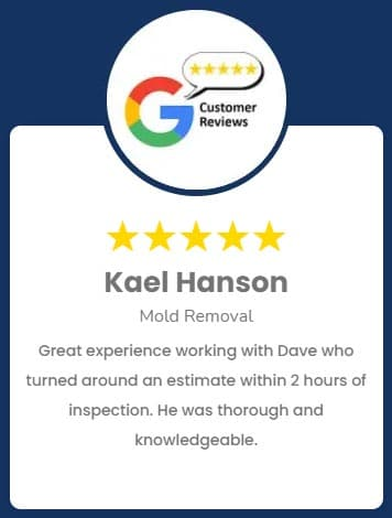 Kael Hanson Mold Removal Review