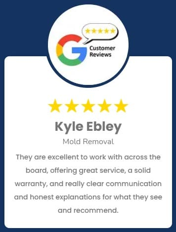 Kyle Ebley Mold Removal Review