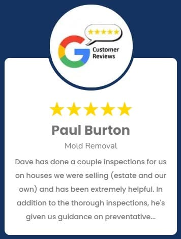 Paul Burton Mold Removal Review