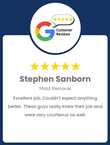 Stephen Sanborn Mold Removal Review
