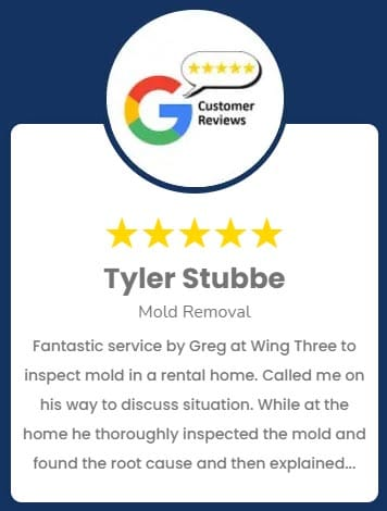 Tyler Stubbe Mold Removal Review